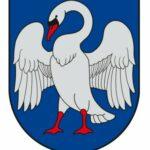 Grupės logotipas (ieškau modelio Jonavoje)